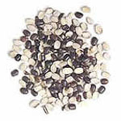 Swastik Industries - Grains & Oilseeds Exporter