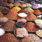 Spices , Herb & Oil Trader